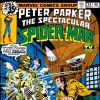 Peter Parker, The Spectacular Spider-Man #28