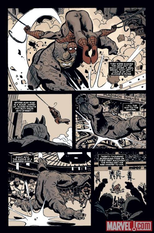 MARVEL UNIVERSE VS  Marvel Universe Vs The Punisher