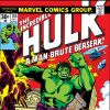 INCREDIBLE HULK (2009) #206 COVER