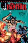 Black Panther #42