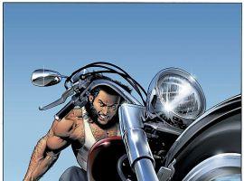 UNCANNY X-MEN (2005) #453 COVER
