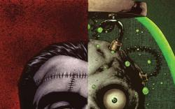 Punisher (2008) #14