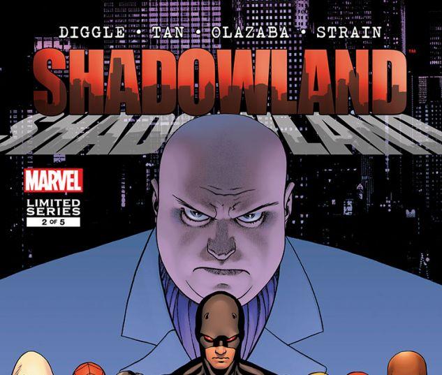 Shadowland (2010) #2