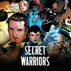 Secret Warriors (2008 - 2011)