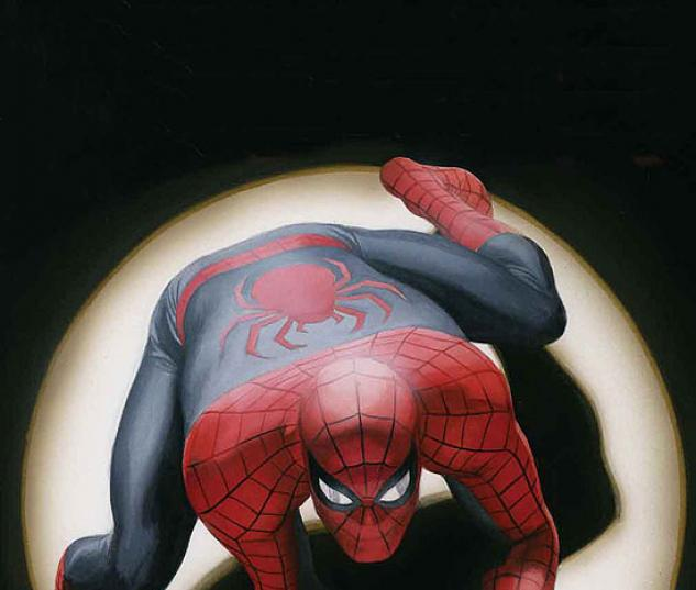 SPIDER-MAN BY ALEX ROSS #0