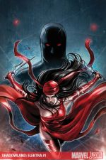 Shadowland: Elektra (2010) #1