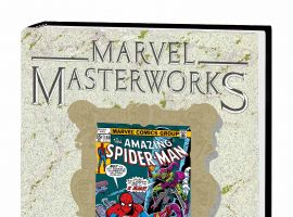 MARVEL MASTERWORKS: THE AMAZING SPIDER-MAN VOL. 17 HC VARIANT (DM ONLY)