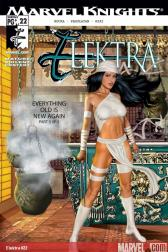 Elektra #22 