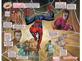 Spider-Man's New Status-Quo