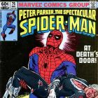 Peter Parker, the Spectacular Spider-Man (1976) #76