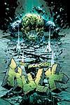 INCREDIBLE HULK (2005) #64 COVER
