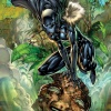 Black Panther (Shrui) by Ken Lashley