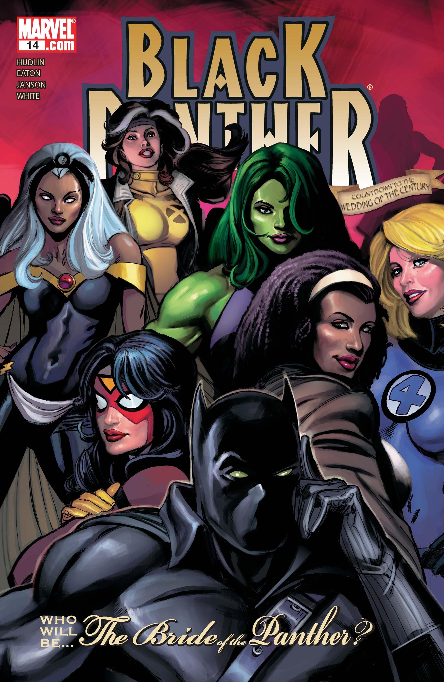 Black Panther (2005) #14