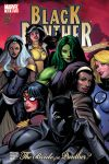 Black Panther (2005) #14 Cover