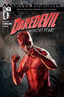 Daredevil Vol. 6: Lowlife (Trade Paperback)