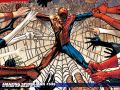 Amazing Spider-Man (1999) #536 Wallpaper