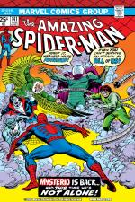 The Amazing Spider-Man (1963) #141 cover