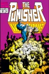 THE PUNISHER: WAR ZONE #29