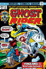Ghost Rider (1973) #15 cover