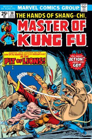 Master of Kung Fu (1974) #30