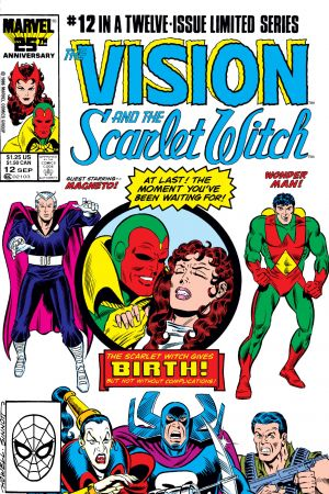 Vision and the Scarlet Witch #12