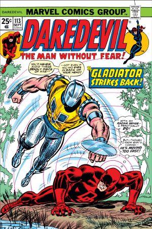 Daredevil (1964) #113