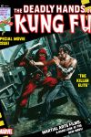 DEADLY_HANDS_OF_KUNG_FU_1974_23