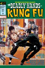 Deadly Hands of Kung Fu (1974) #17 cover