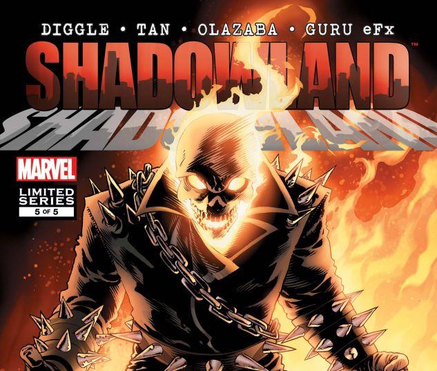 Shadowland (2010) #5