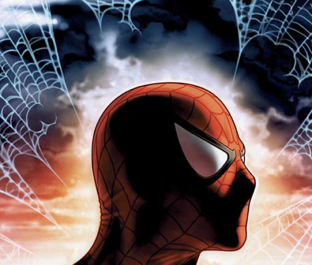 SPIDER-MAN UNLIMITED (2006) #8 COVER