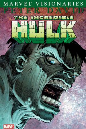 Hulk Visionaries: Peter David Vol. 3 (Trade Paperback)