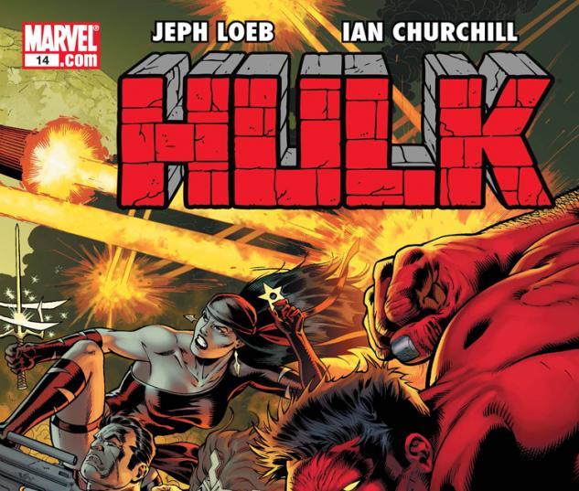 Cover: Hulk (2008) #14