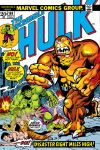 Incredible Hulk (1962) #169 Cover