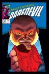 DAREDEVIL #253 COVER