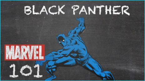 The King of Wakanda - Black Panther - MARVEL 101