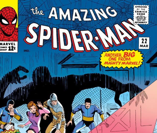 Amazing Spider-Man (1963) #22