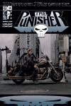 Punisher (2001) #30 Cover