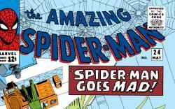 Amazing Spider-Man (1963) #24