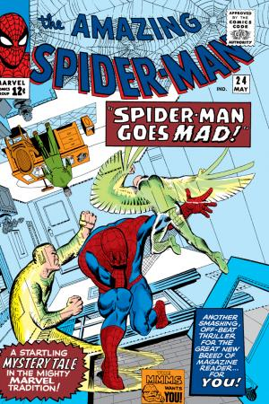 The Amazing Spider-Man (1963) #24