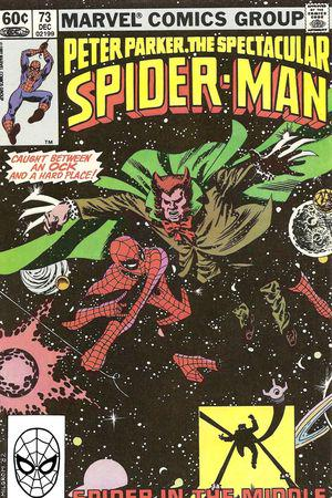 Peter Parker, the Spectacular Spider-Man (1976) #73
