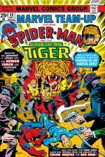 Marvel Team-Up (1972) #40 cover