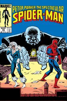 Peter Parker, the Spectacular Spider-Man (1976) #98