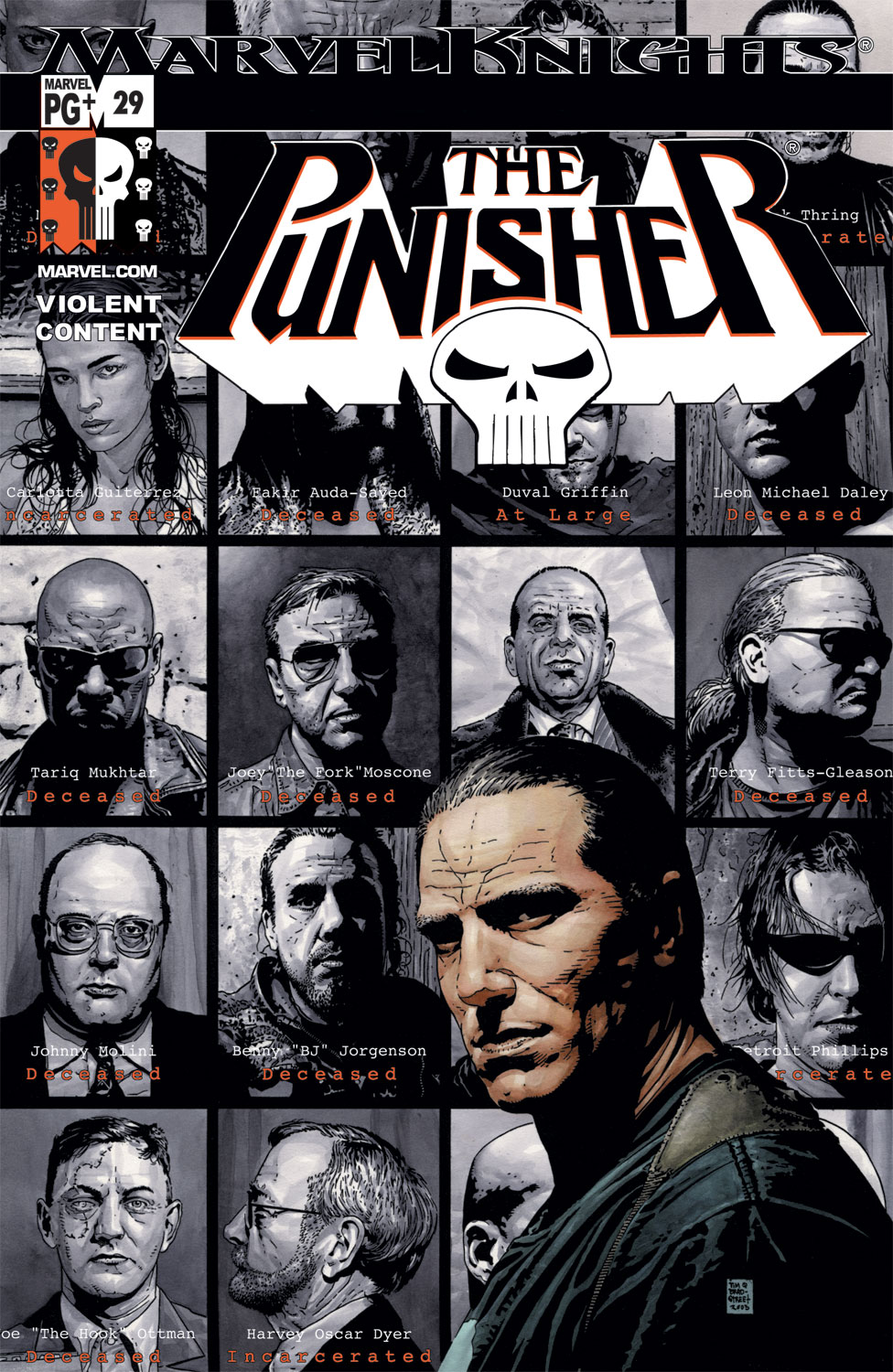 Punisher (2001) #29