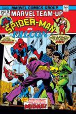 Marvel Team-Up (1972) #30 cover