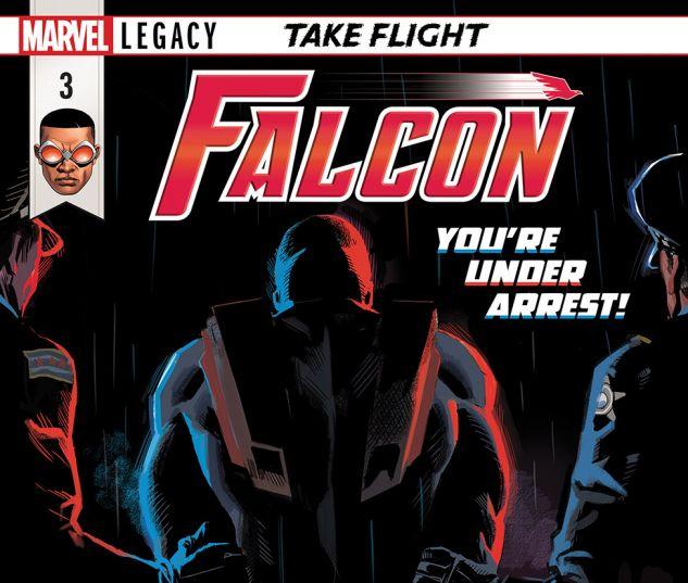 FALCON2017003_DC11