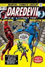 Daredevil (1964) #118 cover