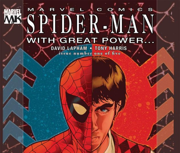 SPIDER_MAN_WITH_GREAT_POWER_2008_1