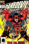 Daredevil (1964) #312