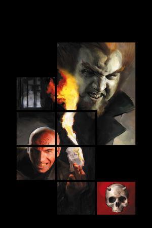 Daredevil Vol. 13: The Murdock Papers (2006)