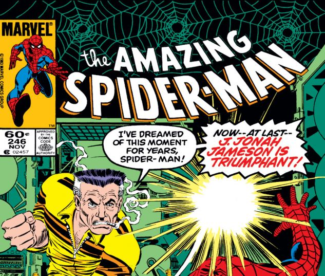 Amazing Spider-Man (1963) #246 Cover